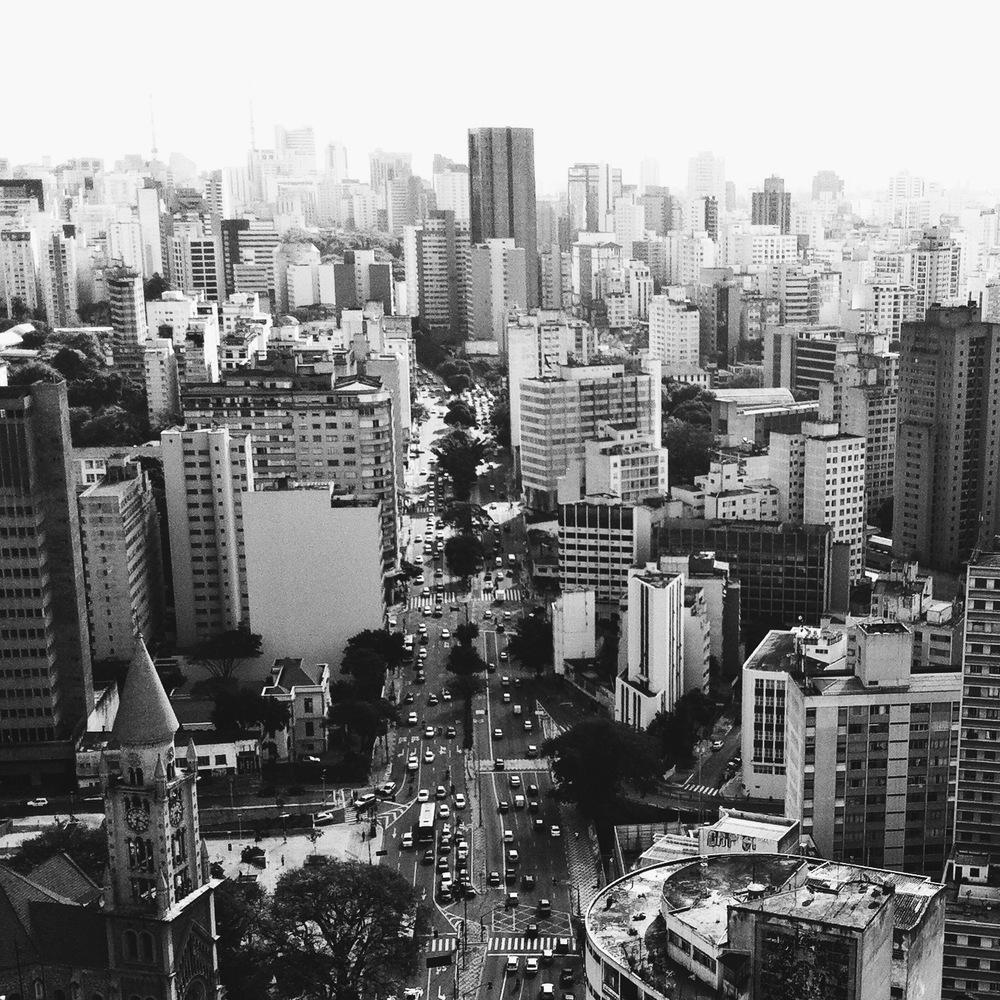 SãoPaulo_Cityscape_CopanBuilding.JPG