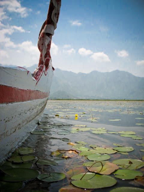 water-tour-5341.jpg