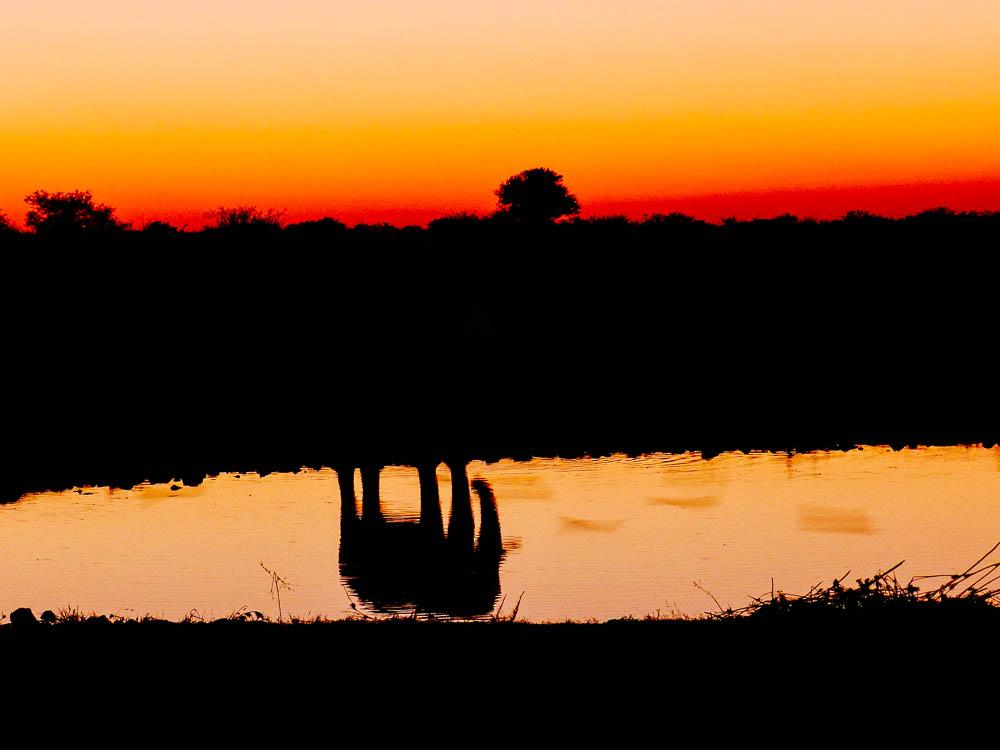 namib desert sunset africa