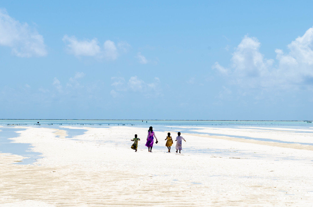 ZANZIBAR spirited pursuit