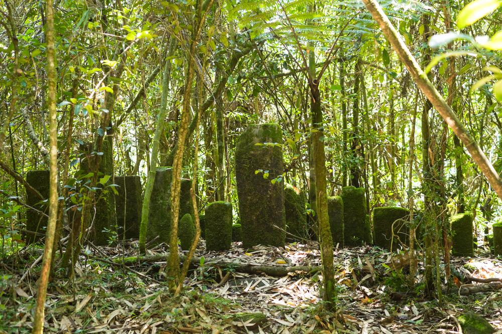 Ramanofana - Madagascar-2.jpg