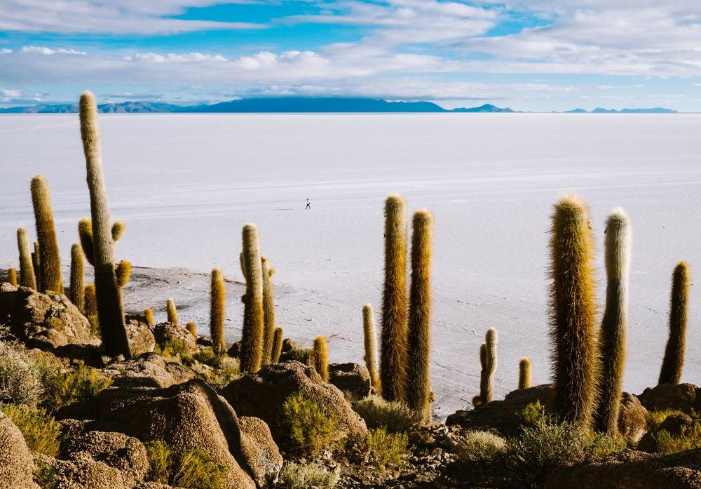 JenniferEmerling_Bolivia_Southwest26.jpg