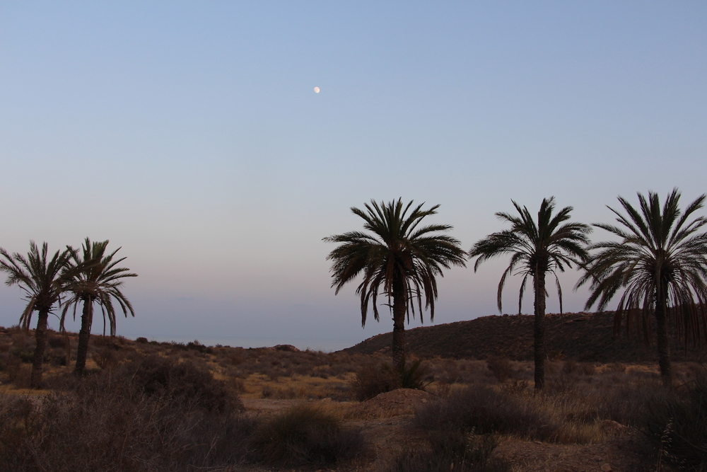 Full Moon in Mazarron .jpg