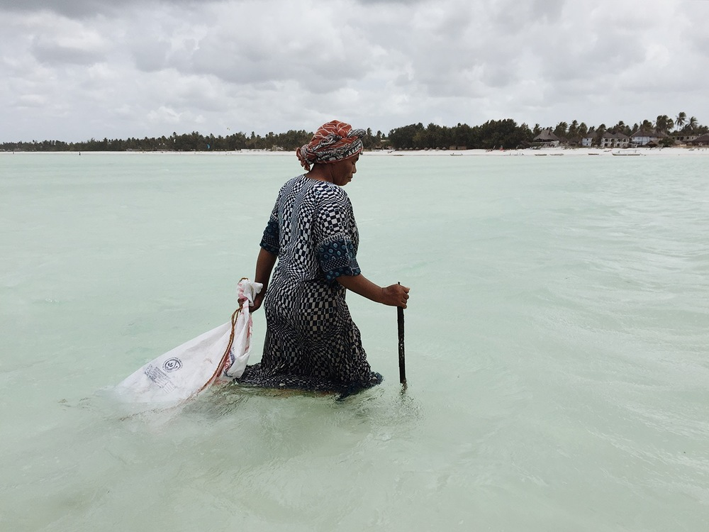 NataliaHorinkova_Zanzibar_10.jpg