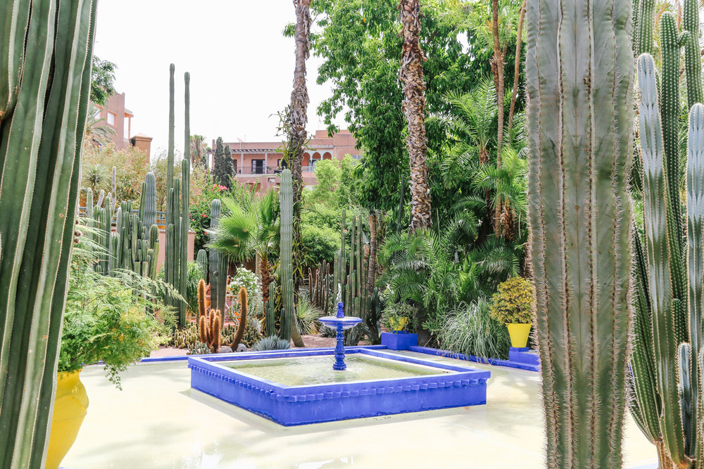 it wasnt until 1966 after his death that yves saint laurent and his partner pierre berg discovered the gardens after their first stay in marrakech - Majorelle Garden