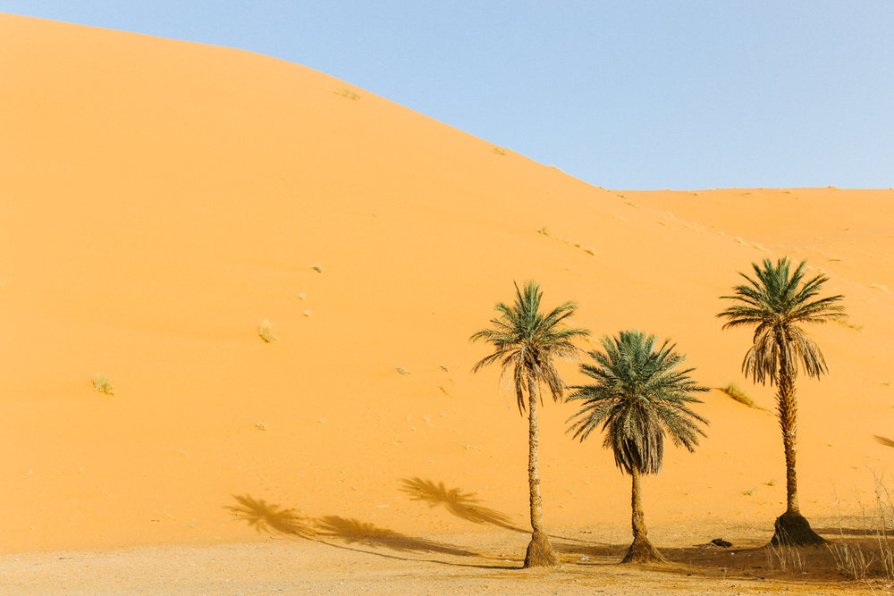 Spiritedpursuit_leelitumbe_morocco_saharadesert-7.jpg