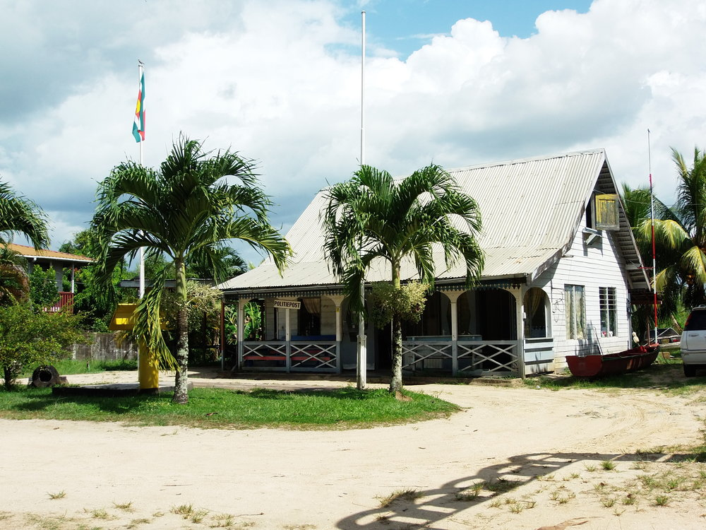 house w:palms.JPG