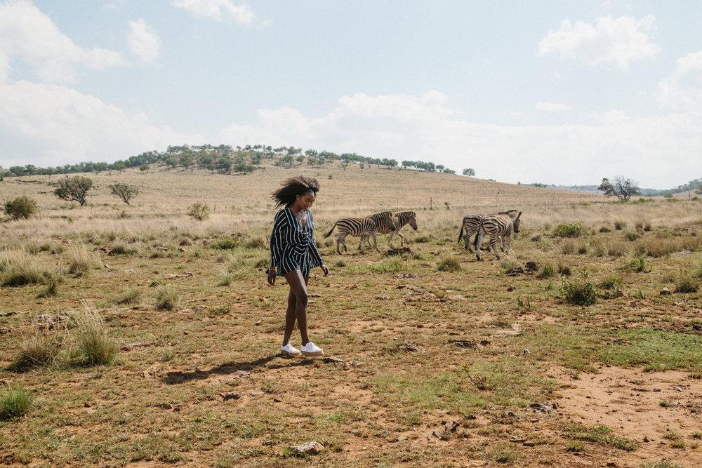 spiritedpursuit_leelitumbe_lionsafaripark-35.jpg