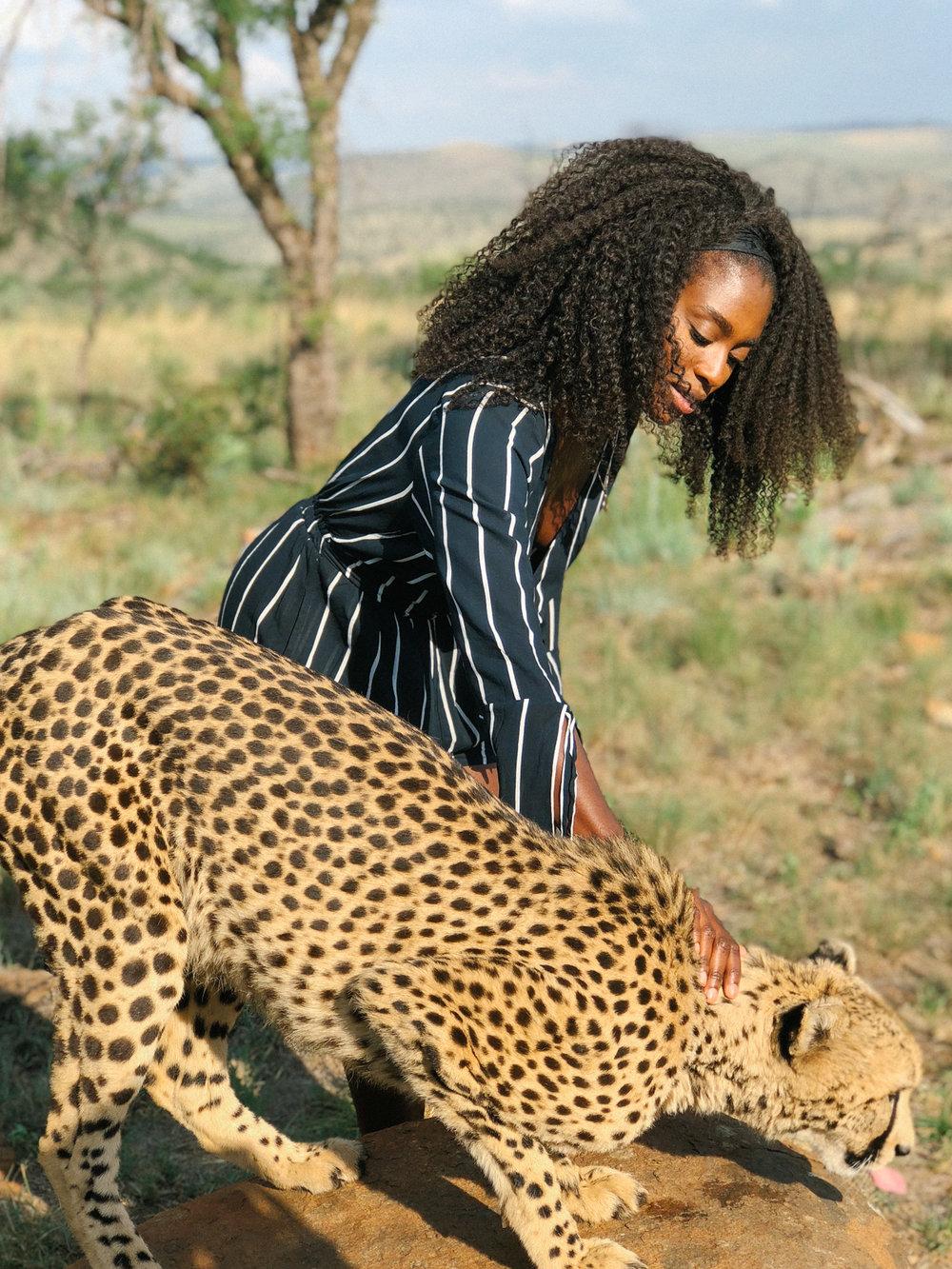 spiritedpursuit_leelitumbe_lionsafaripark-72.jpg