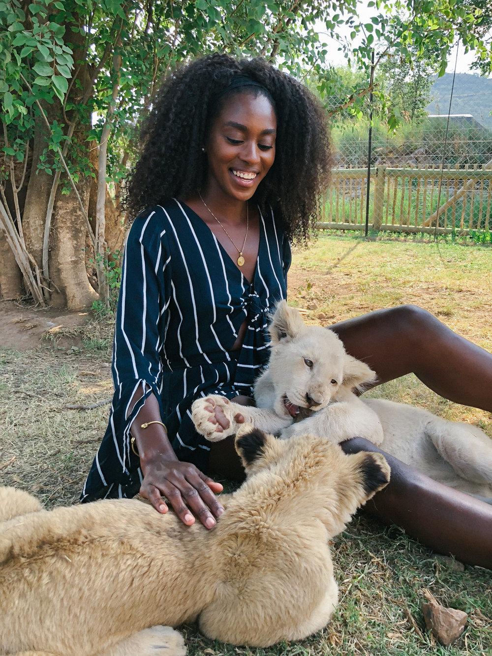 spiritedpursuit_leelitumbe_lionsafaripark-67.jpg