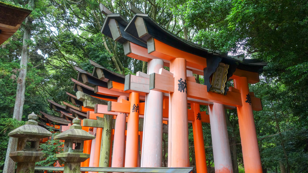 Fushimi-Inari-torri-gates.jpg
