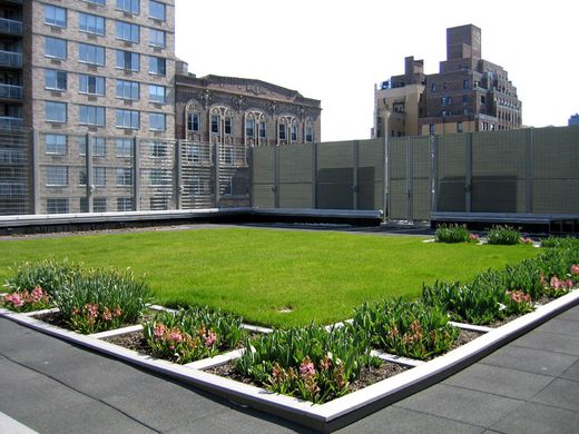 A Green Roof (Image Source:  Greenroofs )