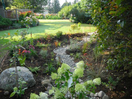 A rain garden (Image Source:  Kitsap Conservation )