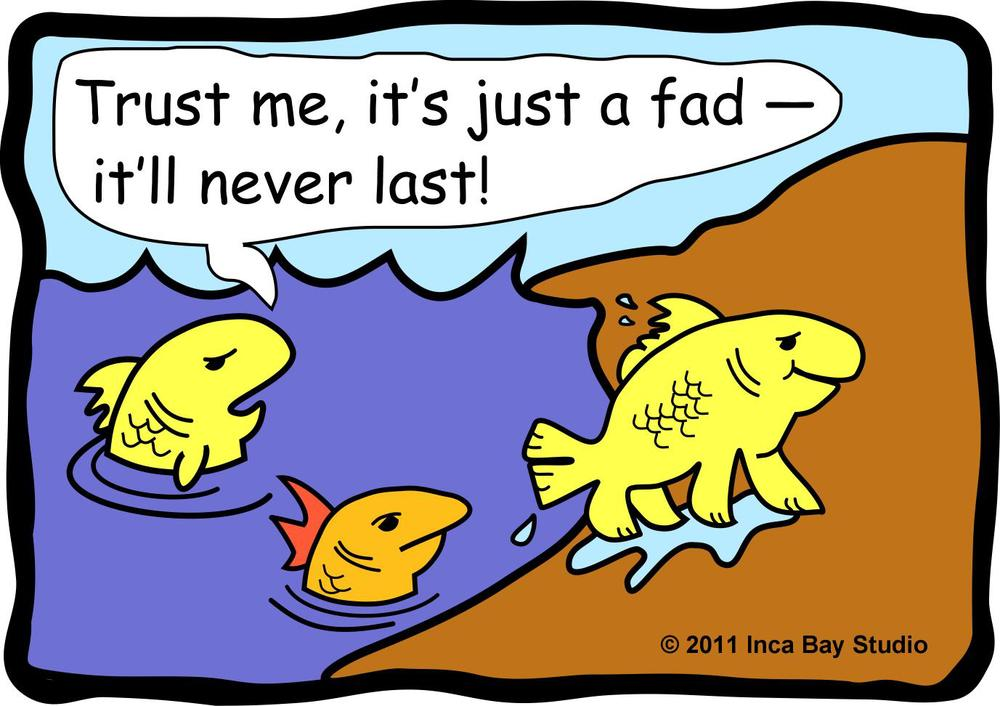KM-FishCartoon1.jpg