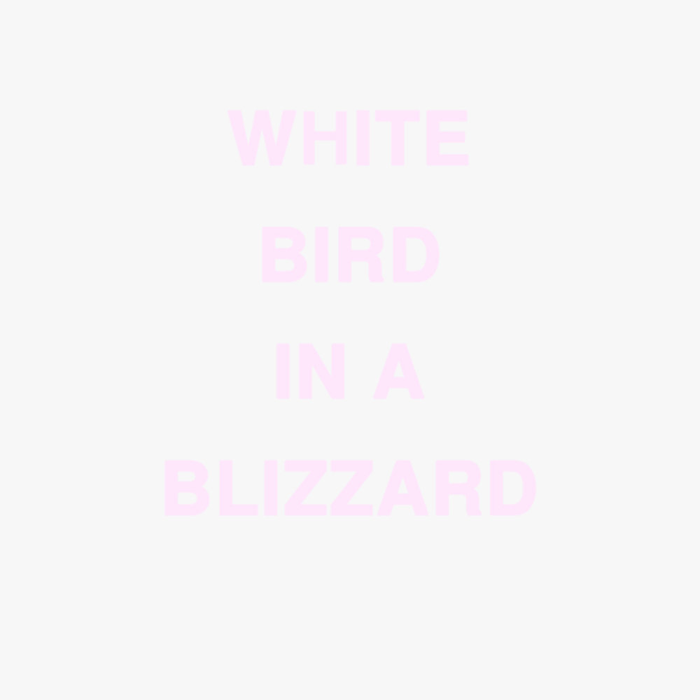 WORDS_WROTE_WhiteBirdINABlizzard.jpg