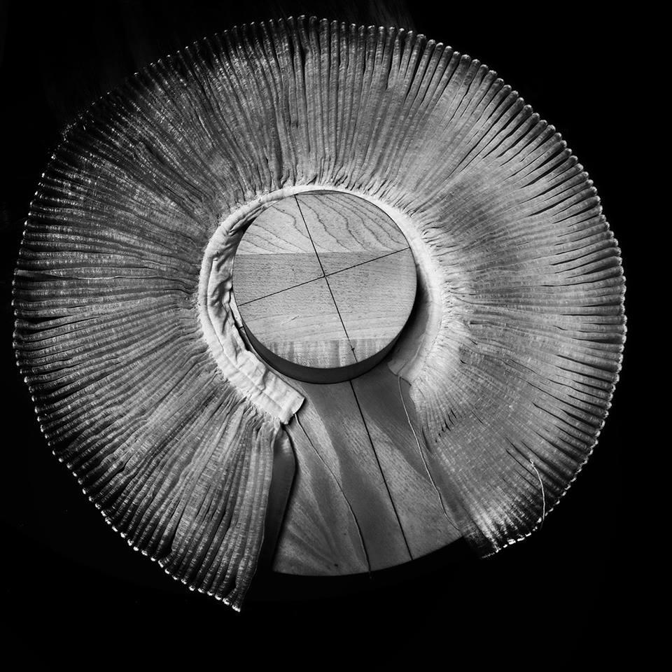 """""""Elizabethan Ruff"""" - Amy Rockett-Todd 2014."""