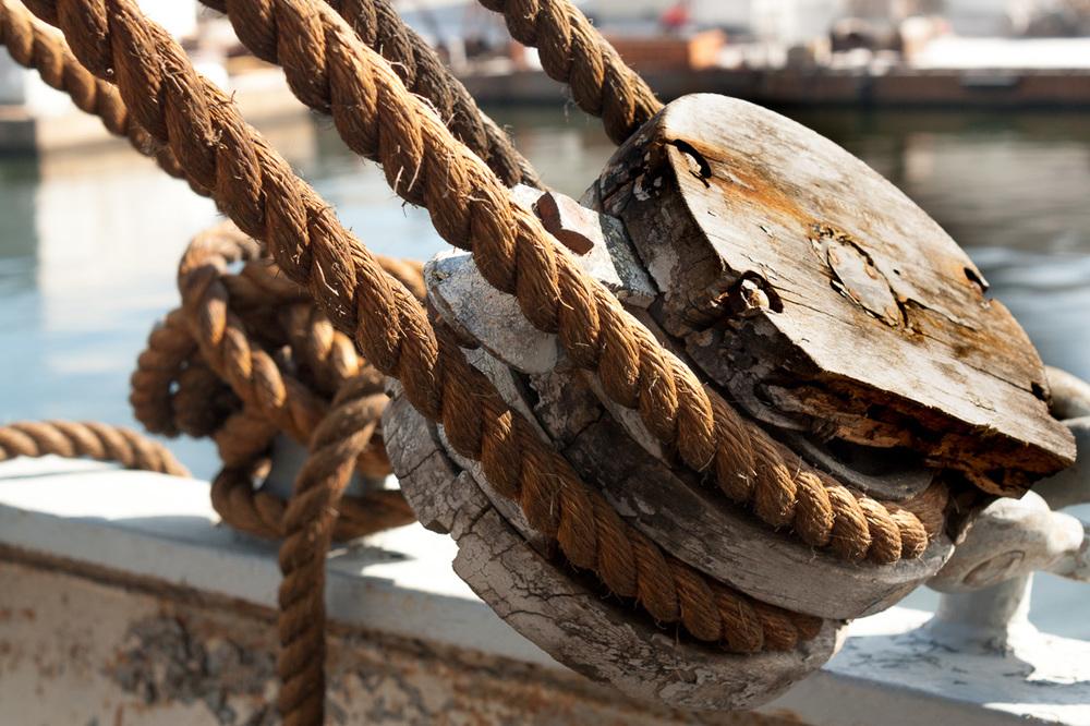 Elizabeth_Mark-rope.jpg