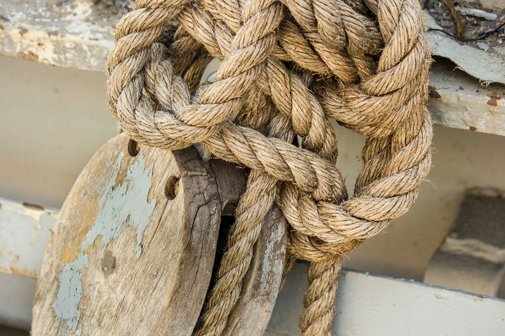 Schuyler_Metzger-Rope.jpg