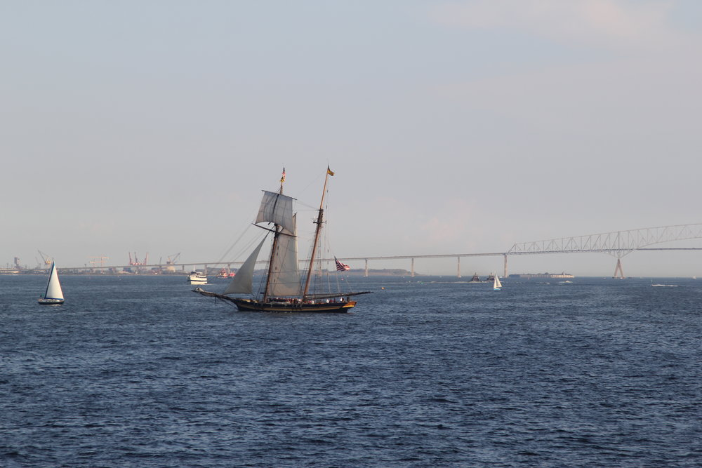 Other historical ships  like the Pride of Baltimore II!   Though we are a steel ship, we do love the wooden tall ships as well.