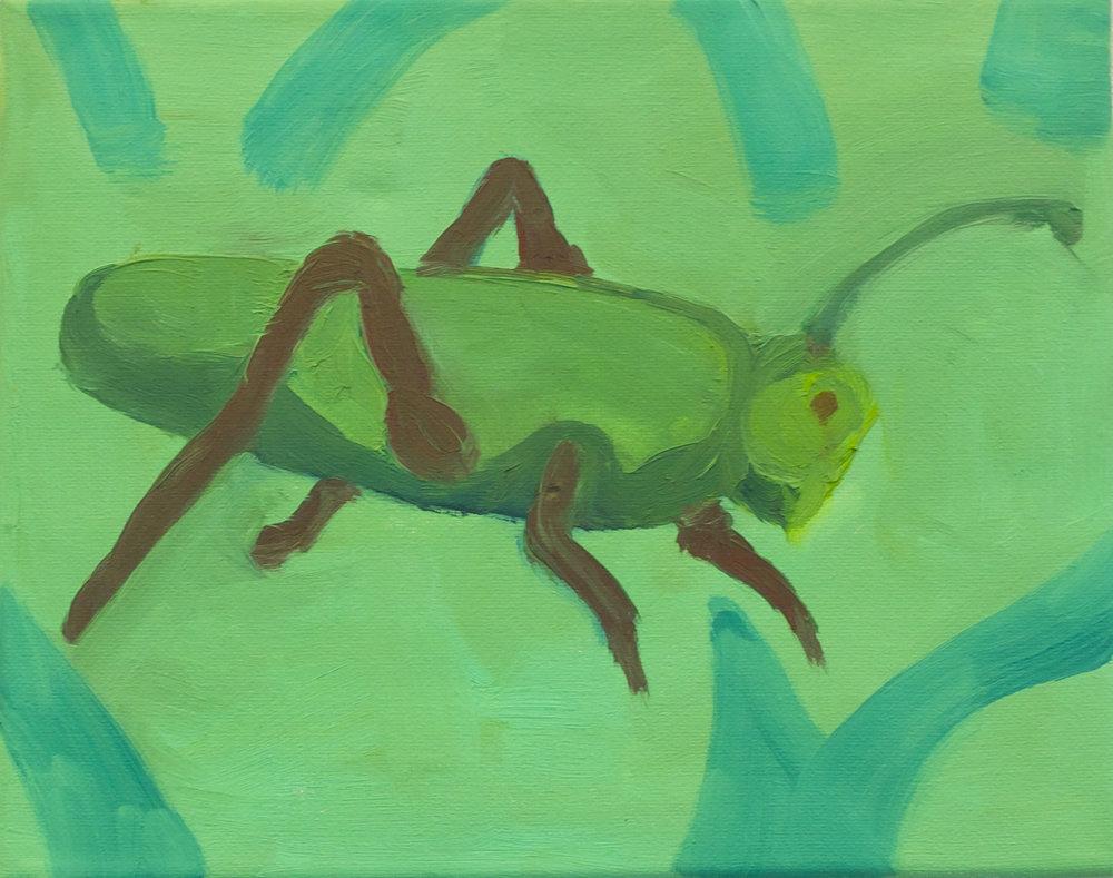 Grasshopper.jpg