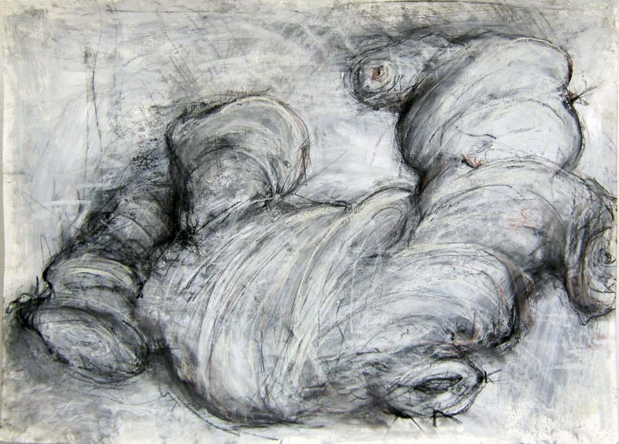 Cynthia Maurice,  Ginger , charcoal, pastel on paper, $900