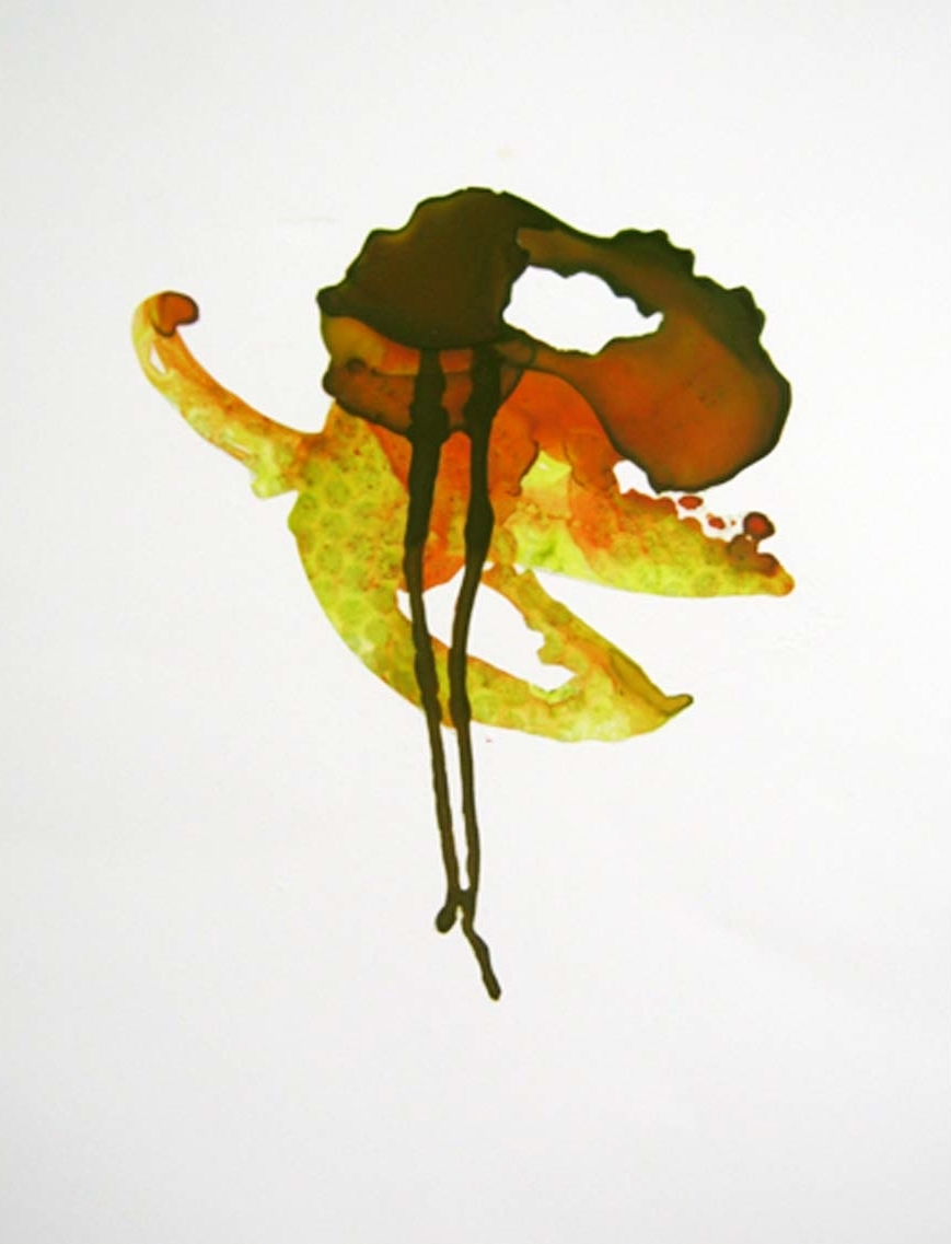 Adria Arch,  Passing Strange , acrylic on mylar, collage, $300