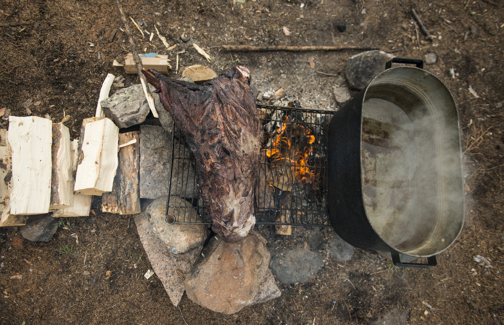 Muskox meat is cooked on an open fire.