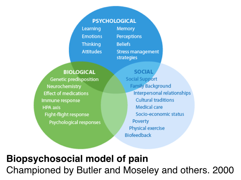 the biopsychosocial model of health The bio-psycho-social model assumes that mental health problems are hardly ever limited to just one domain of human experience (say, just a mental problem) instead, most mental health problems are influenced by multiple domains of human experience, and have biological (medical), psychological (mental) and social/spiritual impacts.