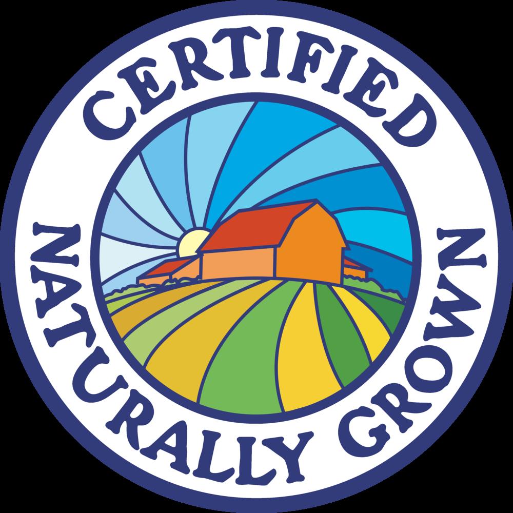 CNG logo.transbg.3212px.png
