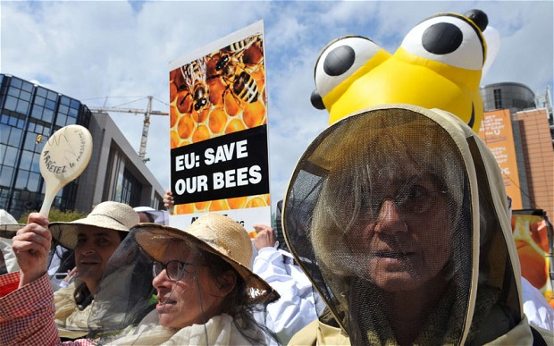 People are really started to question our corporate destruction of the planet and see honey bee issues as the canary in the coal mine. This will eventually come to a head.
