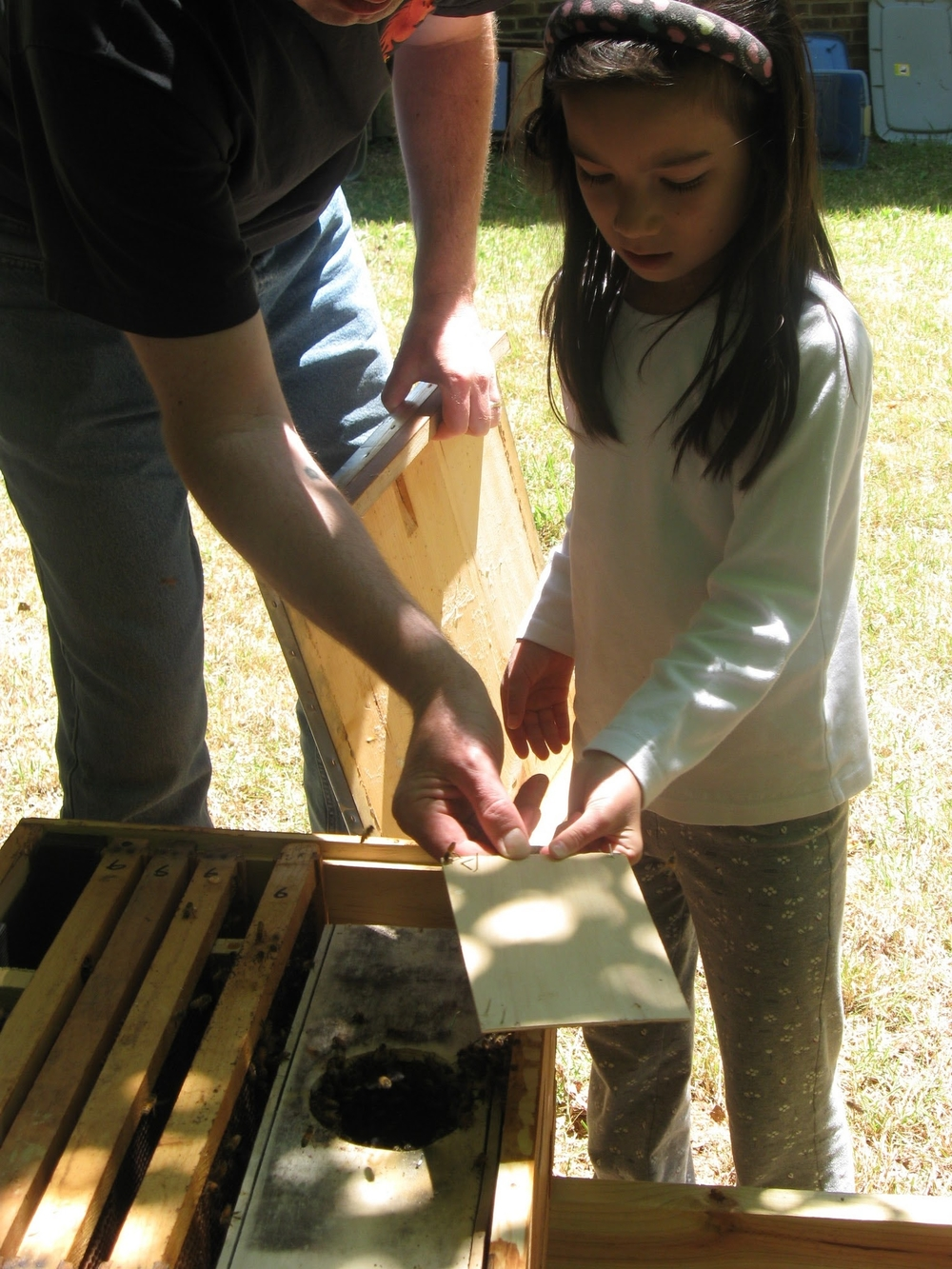 "Educating the next generation of beekeepers, growers, nature lovers, and maybe simply ""deeper thinkers"". :)"
