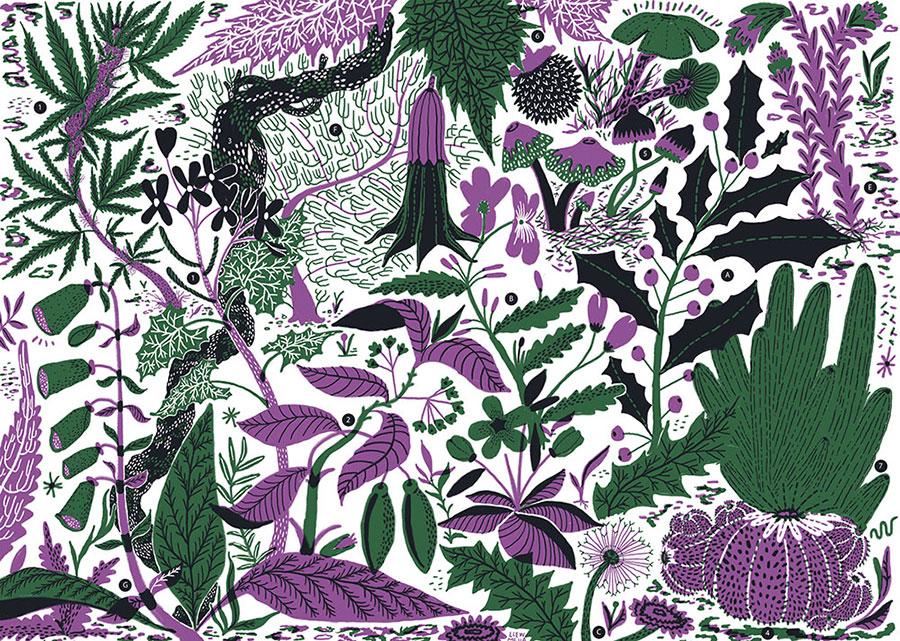 psychoactive-plants-tums.jpg