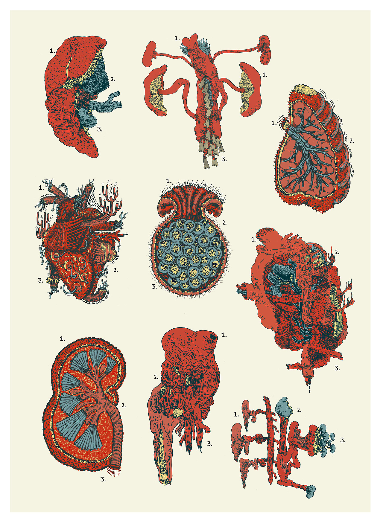Partnered up with  Erik Svetoft  recently to make a little chart of organs!    Fun Collaboration!