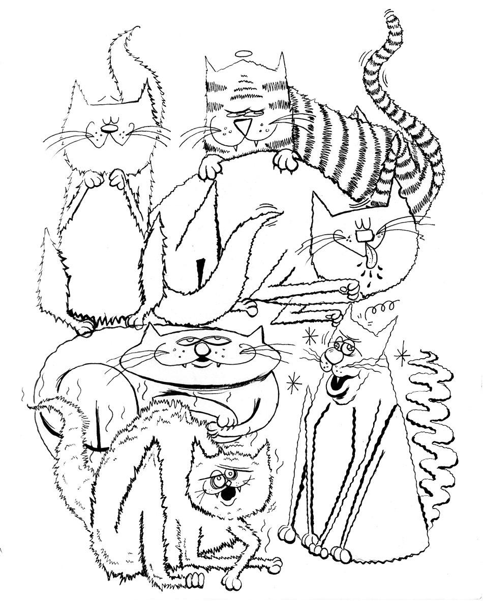 …more catzz