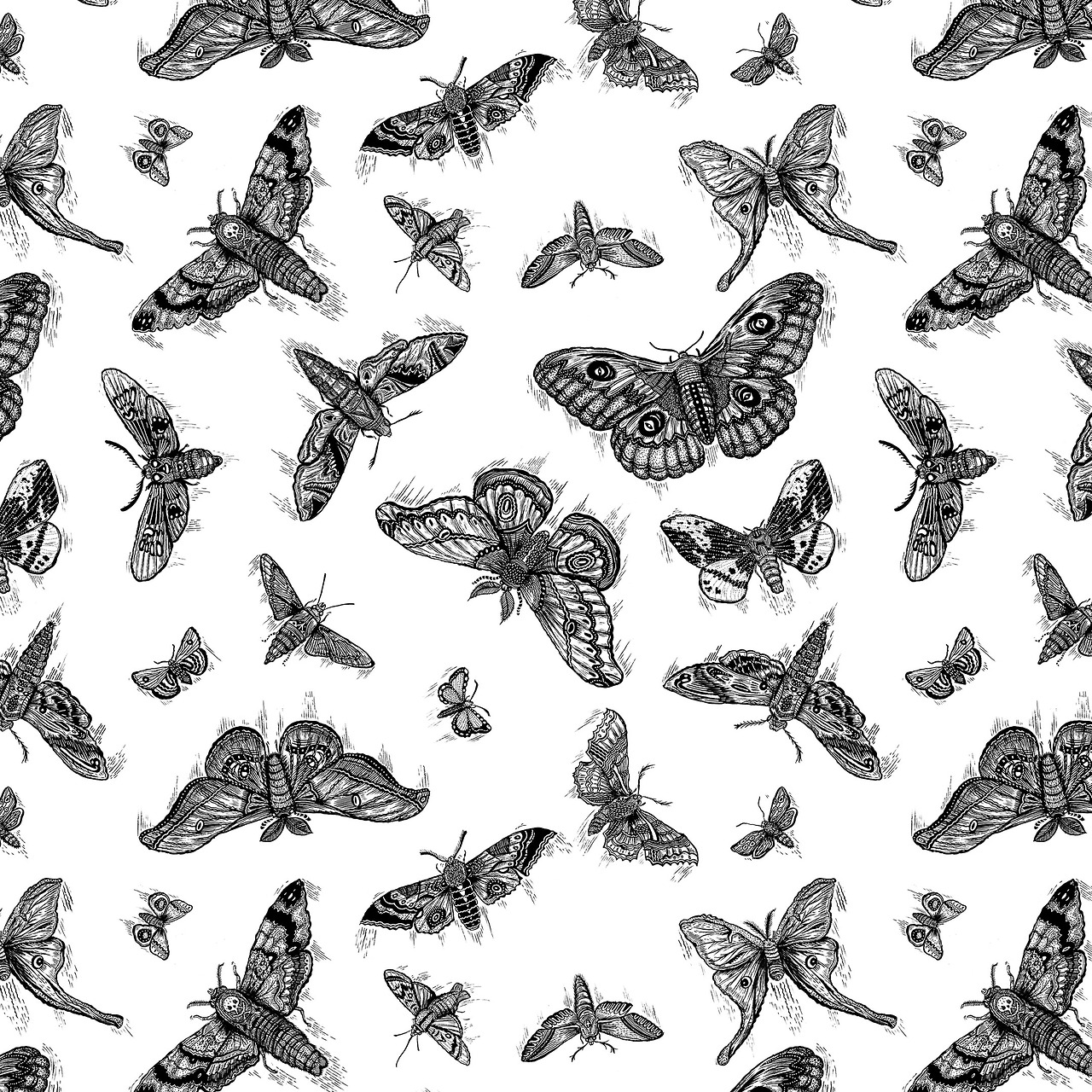 Thought I would just make a pattern of the moths i drew before…why not?