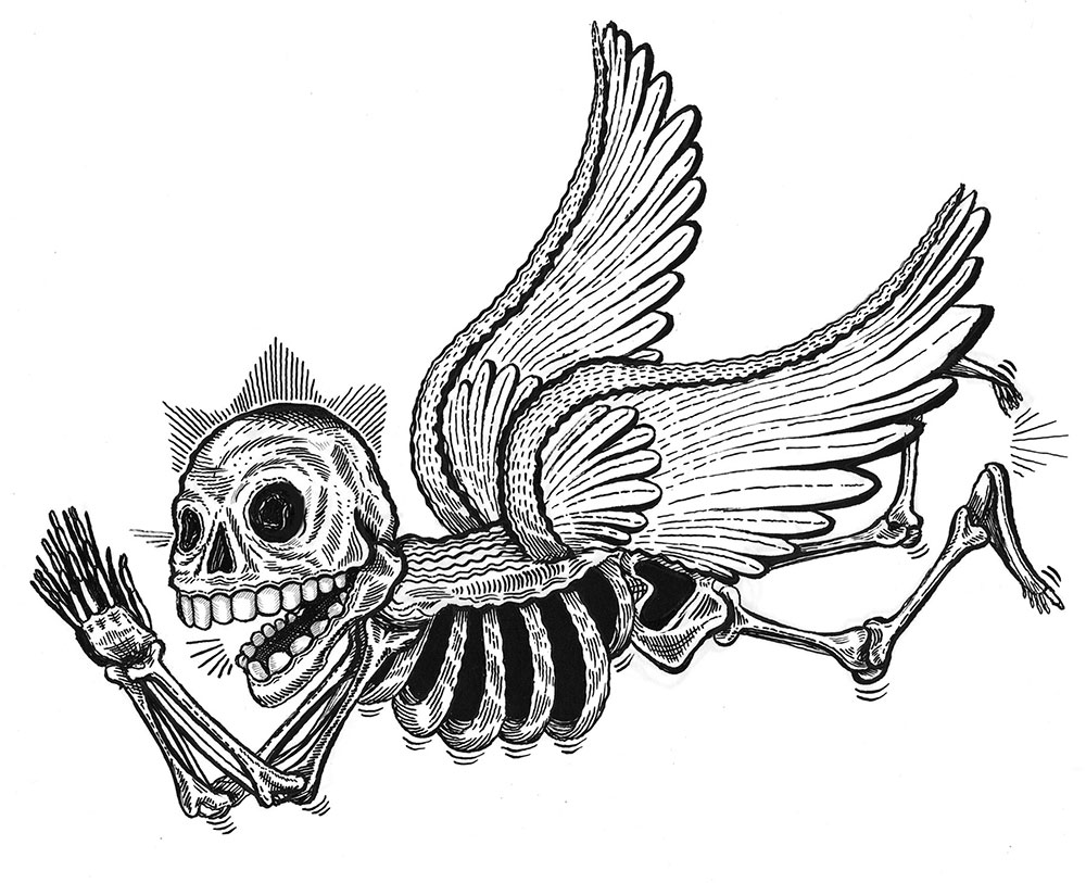 flying skelly I drew