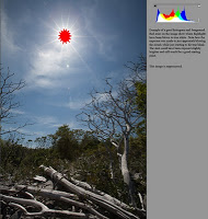 SunExample2.jpg
