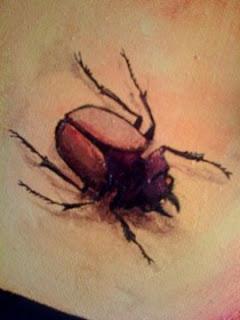 beetle2%C2%A92009MaryPTraverse.jpg