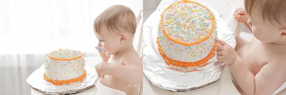 atlanta-georgia-natural-light-studio-grant-park-cake-birthday-smash-family-tulle-photographer-baby-girl_1314.jpg