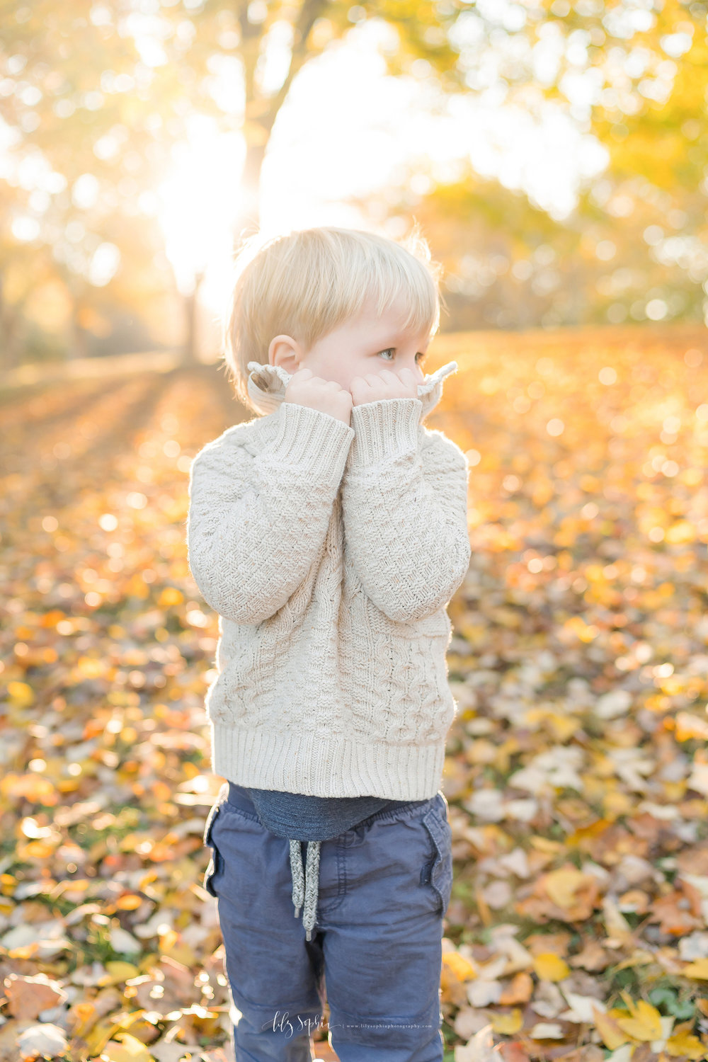atlanta-midtown-brookhaven-decatur-lily-sophia-photography-photographer-portraits-grant-park-family-sunset-fall-outdoor-session-brothers-toddler-baby_0144.jpg