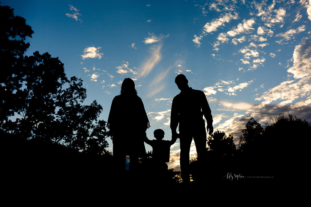 atlanta-midtown-buford-ashford-dunwoody-vinings-alpharetta-lily-sophia-photography-outdoor-sunset-park-session-family-photographer-toddler-boy_0462.jpg
