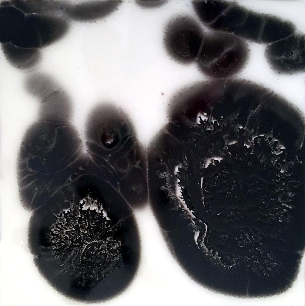 Petri Series II: 1