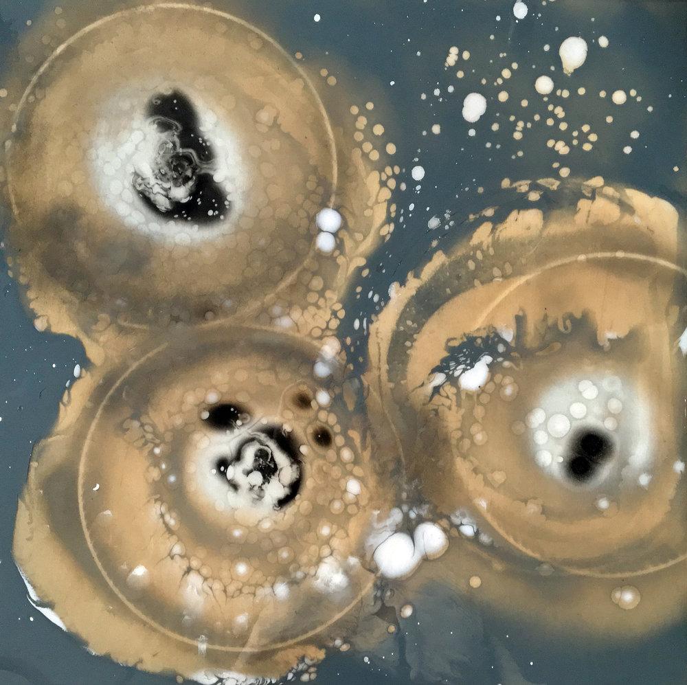 Petri Dish Series: Sneeze III