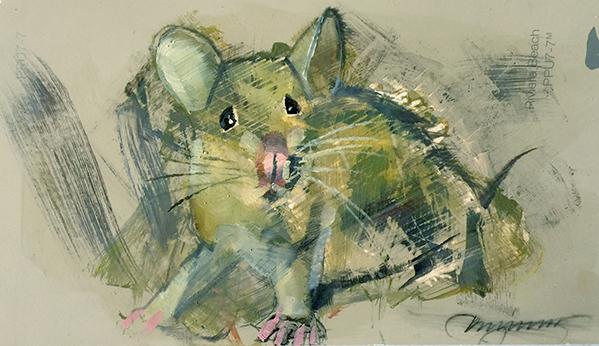 Mouse8uEM.jpg