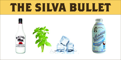 The_Silva_Bullet_2_large.jpg