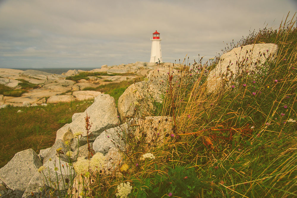 PEGGY'S COVE NOVA SCOTIA JENNIFER PICARD PHOTOGRAPHY WEB BLOG 12.jpg