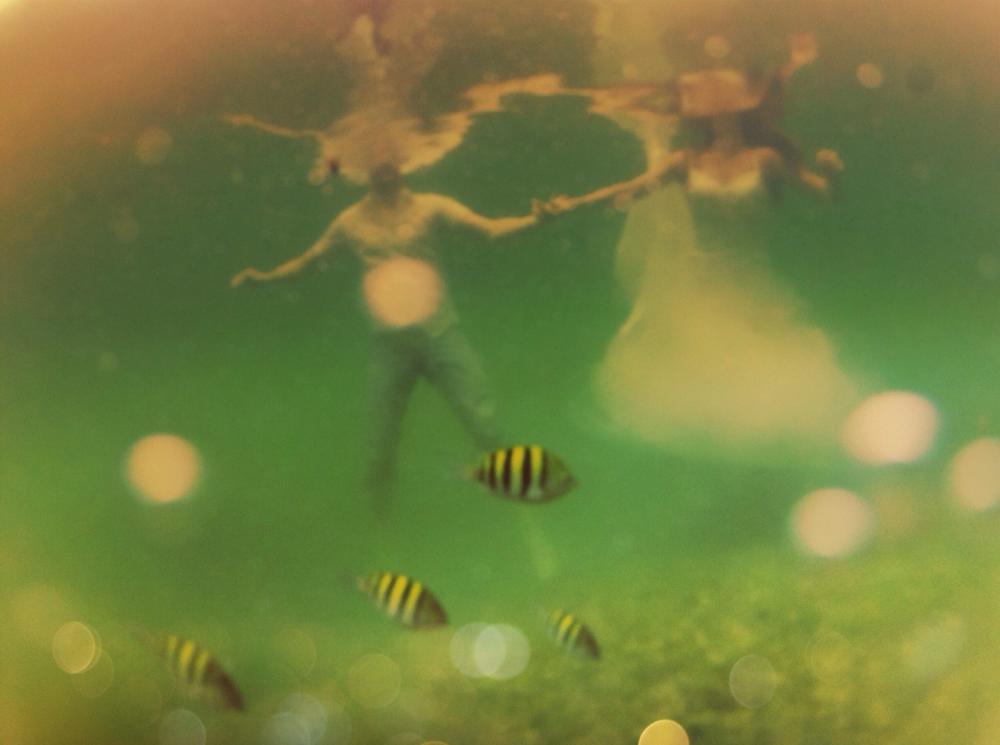 underwater wedding - akumal, mexico - go pro
