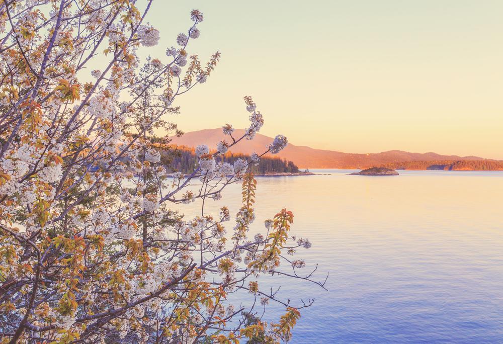 gospel rock sunset, sunshine coast bc, jennifer picard photographer, sunshine coast wedding photographer
