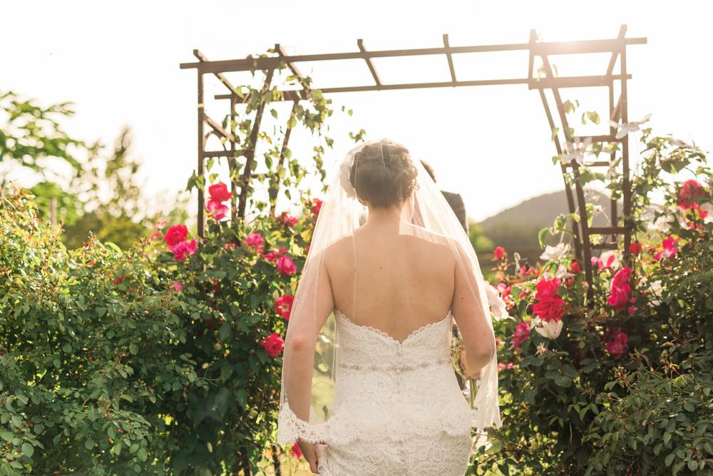 SunshineCoast-BC-Wedding-Photographer112.jpg