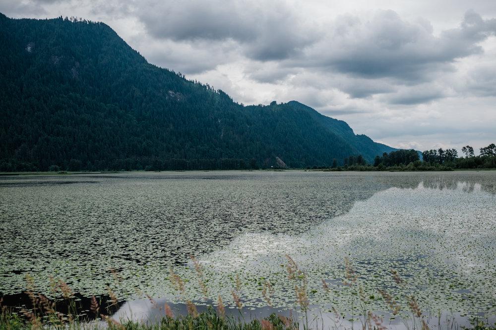 Pitt Lake Engagement Photos, Jennifer Picard Photography, Vancouver Wedding Photographer, Vancouver Engagement Photographer -DSCF9172.jpg